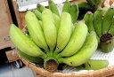 沖縄・石垣島より直送♪島バナナ 約1kg