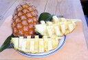 沖縄・石垣島より直送♪完熟パイナップル(露地パイン・ハワイ種)約3.5kg(送料無料)