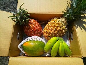 石垣島産フルーツセット(島パイン(ジュワリーパイン)・パパイヤ・島バナナ)送料無料(代金引換不可)ステイホーム中に石垣島を感じませんか。贈答にもおススメ