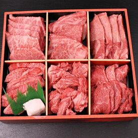 ヒライの6点食べ比べ焼肉 600g(3〜4人前)(冷凍)【送料無料※一部地域+500円】★昨年2500個完売★