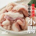 【あす楽対応】牛ホルモン(小腸) ぷるっぷるでコラーゲンたっぷり 300g【産地直送】