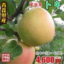 青森りんご☆送料無料☆家庭用トキ10キロ28〜40玉 発送は10月1日頃から