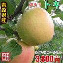 青森りんご☆送料無料☆訳ありトキ10キロ28〜40玉 発送は10月1日頃から