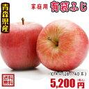 青森りんご☆送料無料☆家庭用有袋ふじ10キロ28〜40玉