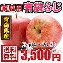 青森りんご☆送料無料☆家庭用有袋ふじ5キロ14〜20玉