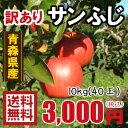 青森りんご 送料無料 訳ありりんごサンふじ10kg(10キロ)40玉 色薄品【りんごわけあり・リンゴ】