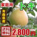 青森りんご☆送料無料☆家庭用トキ5キロ14〜20玉 発送は10月3日頃から