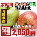青森りんご☆送料無料☆家庭用サンふじ王林詰め合わせ5kg(5キロ)14〜20玉