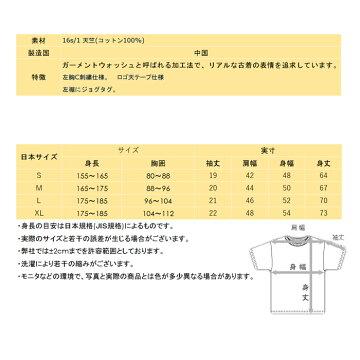 左胸ビッグC同色刺繍チャンピオンTシャツc3-m358-07