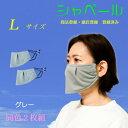 シャベールマスク 話し易く呼吸が楽なエチケットマスク 洗えます 日本製 送料無料 mask-sya-l-gray グレー2枚組  Lサ…