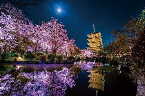 ジグソーパズル 1000ピース 光るパズル KAGAYA 月に咲く 京都 50x75cm 10-1299