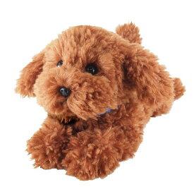 【送料無料】 ひざわんこ トイプードル ブラウン ぬいぐるみ 犬 動物 アニマル 全長37cm
