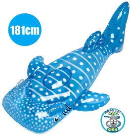 【送料無料】 フロート ビッグジンベエザメフロート 181cm FRT-163V ジンベイザメ