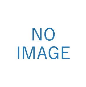 レイメイ藤井[CHA520]カードケース[ファイル・ケース][整理用品][名刺入れ]