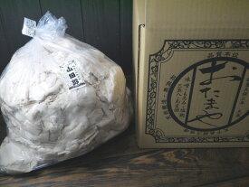 九平次 純米大吟醸酒粕 山田錦(10kg)
