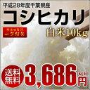 【送料無料】【あす楽】 平成28年産 新米 コシヒカリ 1等米 白米 精米10kg【千葉県産】【お米】【こしひかり】【10kg…