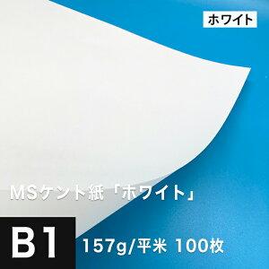 MS ケント紙 「ホワイト」 157g/平米 B1サイズ:100枚, 製図 紙 図画 デザイン用 画用紙 レーザープリンター インクジェットプリンター 高級紙 賞状 領収書 名刺 カード 印刷紙 印刷用紙 滑らか