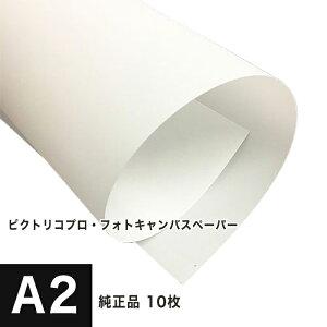 【PICTORICO純正品】ピクトリコプロ・フォトキャンバスペーパー A2サイズ:10枚 PPV200-A2-10, 染料顔料兼用 速乾性 キャンバス調 光沢紙 重厚 柔らか 印刷紙 印刷用紙 印画紙 インクジェット用 松
