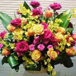 [お祝い花][誕生日花]にも★バラの華やかアレンジ