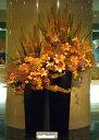 [お祝い花][イベント花]などにディスプレイアレンジ【HLS_DU】【RCP】【楽ギフ_メッセ入力】532P26Feb16