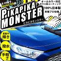 ☆ガラス系コーティング剤PikaPikamonsterピカピカモンスターmonster級の至高の輝き超撥水手軽さオールカラー対応安心の100%日本製本格プロ仕様