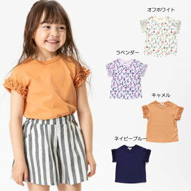 【セール50%OFF】【メール便OK】seraph(セラフ)4色2柄半袖Tシャツ【女の子】【80-140】【s307129】
