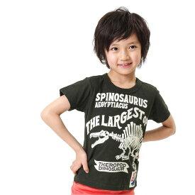 【セール50%OFF】【メール便OK】エフオーキッズ F.O.KIDS ダイナソーBoneTシャツ【男の子】【80-140】【r207378】