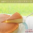 六甲山麓牛乳仕込み 遊酪舎しっとりしたちーずけーき チーズケーキ 5号 約300g ポスト投函便 送料無料