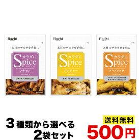 ハチ食品 からだにスパイス 選べる3種類から2袋 シナモン ジンジャー ターメリック ポスト投函便無料