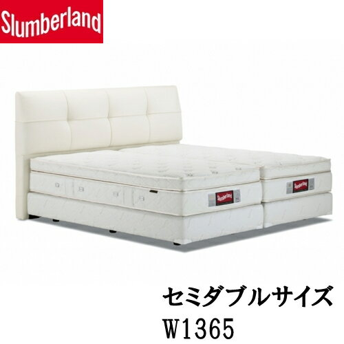 【フランスベッド】 一般ベッド スランバーランド フレームのみ sl-021ds-m 総革、本革張り