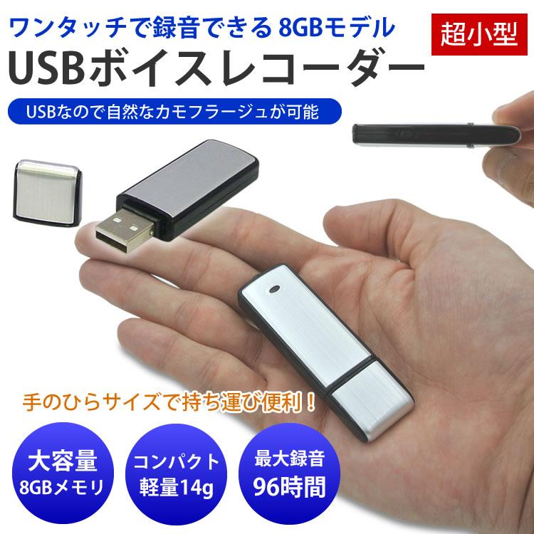 小型ボイスレコーダー ICレコーダー 8GBメモリ内蔵【メール便発送 送料無料】