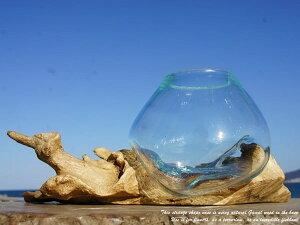 ポイント10倍 流木ガラスオブジェ TNWL 土台の木が長いタイプ 花瓶 アクアリウム テラリウム フラワーポット 金魚鉢 メダカ水槽 バリ島 アジアン雑貨 リサイクルガラス おしゃれインテリア