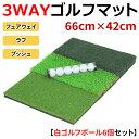 3WAY ゴルフ 練習 マット フェアウェイ ラフ ブッシュ SBR 42×66cm 練習用ゴルフボール6個セット