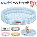 ひんやり ペット ベッド マット 夏用 犬 猫 冷感 パイル ストライプクール XLサイズ