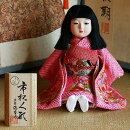 【送料無料!】【熊倉聖祥】京製市松人形スワリ(尺二)