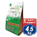 アーテミスオソピュアダック&ガルバンゾー4.5kgグレインフリーARTEMIS【正規品】【ポイント10倍】