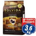 ソルビダ グレインフリー ターキー 室内飼育全年齢対応 3.6kg ソルビダ(SOLVIDA)【正規品】【オーガニック】