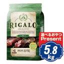 RIGALO リガロ ハイプロテイン ラム 5.8kg 【正規品】
