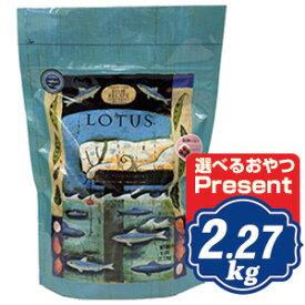 ロータス グレインフリー フィッシュレシピ 小粒 2.27kg Lotus ドッグフード 【正規品】 【ポイント10倍】