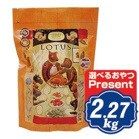 ロータス グレインフリー ターキーレシピ 小粒 2.27kg Lotus ドッグフード 【ポイント10倍】 【正規品】