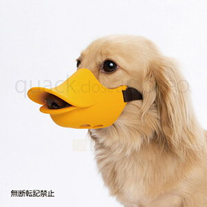 OPPO オッポ quackclosed クァッククローズド オレンジ Mサイズ しつけ用口輪
