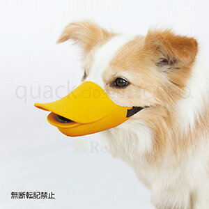 OPPO オッポ quackclosed クァッククローズド オレンジ Lサイズ しつけ用口輪