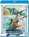 新品北米版Blu-ray! 【ダンジョンに出会いを求めるのは間違っているだろうか】 全13話!