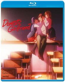 ■予約■新品北米版Blu-ray!【ドメスティックな彼女】全12話!