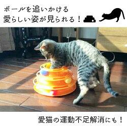 【送料無料】