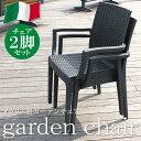 ガーデンチェア 肘付き 2脚セット ガーデンチェアー ガーデン チェア チェアー イス 椅子 いす ガーデン ガーデンファニチャー リゾート 庭 屋外 野外 アウトドア カフェ アジアン モダン シン
