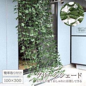 グリーンシェード グリーンフェンス 1m×3m カーテン 目隠し グリーンカーテン 目隠しフェンス ベランダ 葉っぱ グリーン 窓 カーテン フェンス 植物 バラ 葉 オーニング 日よけ ガーデン 日除
