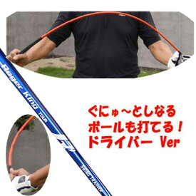 【進化した 58口径モデル】【待望のドライバーバージョン】ムチのようにしなる柔らかいシャフトでプロスイングを身につける ボールも打てる練習機 広田ゴルフ ロジャーキング スイングドクター ツアー 02P05Nov16