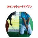 【ツアー優勝者使用】【30インチ ショート アイアン】【Roger King Swing Master】 広田ゴルフ ロジャーキング スイン…