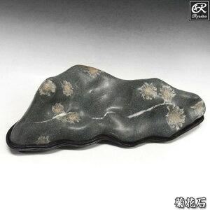 菊花石 約14.5kg 台付き 鑑賞石 原石 鉱物 鉱石 天然石 パワーストーン